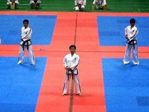 第25回全日本大会 朴武館 師範・副師範のトゥル分解演武