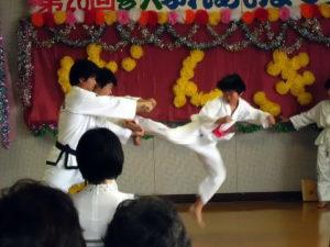第18回トンイルマダン東京2011 テコンドー演武